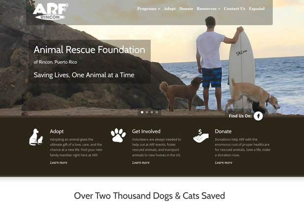 Animal Rescue Foundation of Rincon, Puerto Rico